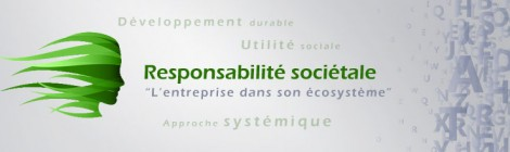 La Responsabilité Sociétale des Entreprises (RSE)