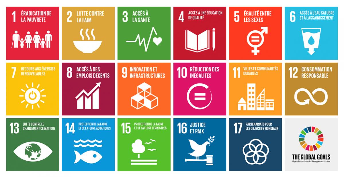 Les 17 Objectifs de Développement Durable (ODD)